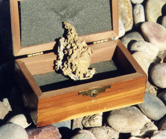 Gold Nuggets found in Nevada